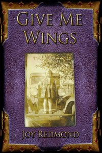 bookcover of Give me Wings by Joy Redmond